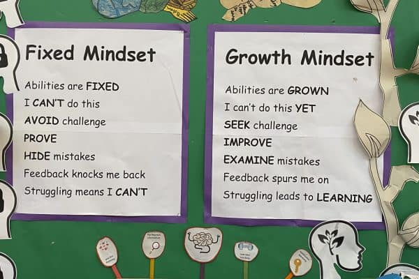 Growth Mindset HW 2