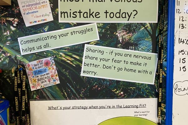 Growth Mindset HW mistakes