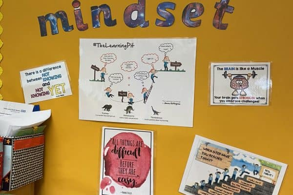growth mindset HW